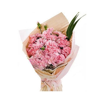 24 Pink Carnations and Greens Send to Manila Philippines
