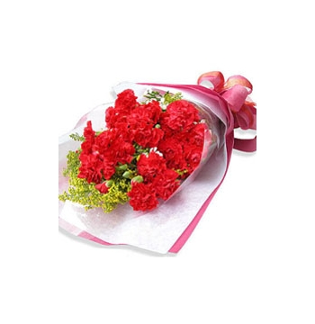 24 Red Carnations match Grass Send to Manila Philippines
