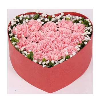 24 Pink Carnations with babybreath Send to Manila Philippines