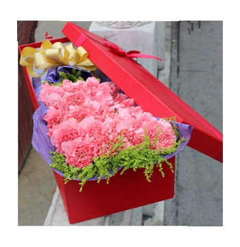 36 Pink Carnations with Greens Send to Manila Philippines