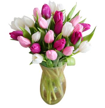 buy 24 mix tulips vase in manila
