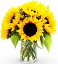 send sunflower to manila