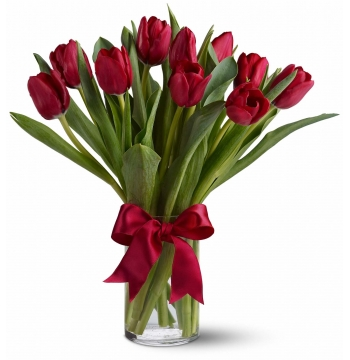 Red Tulip with Vase Send to Manila Philippines