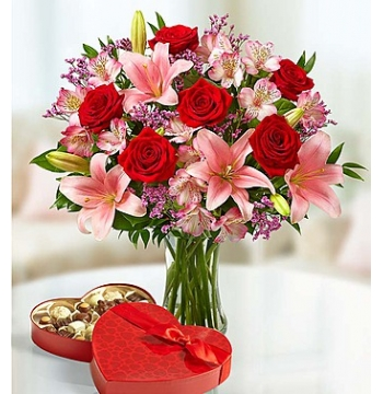 6 Red Roses Vase with Guylian Chocolate