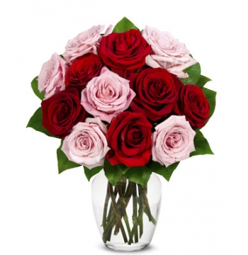 One Dozen Red & Pink Roses Send to Manila Philippines