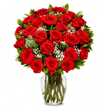 Two Dozen Long Stemmed Red Roses Send to Manila Philippines