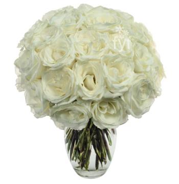Two Dozen White Roses Send to Manila Philippines