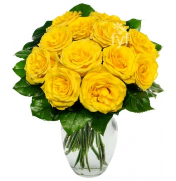 One Dozen Yellow Roses Send to Manila Philippines