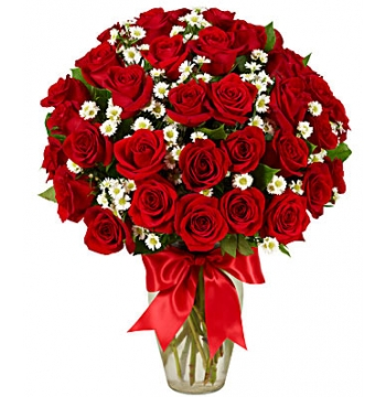 3 Dozen Roses - Red Send to Manila Philippines