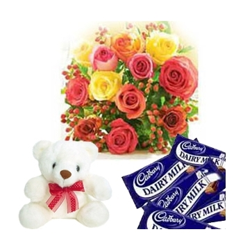 12 Mixed Roses,White Bear with Cadbury Chocolate