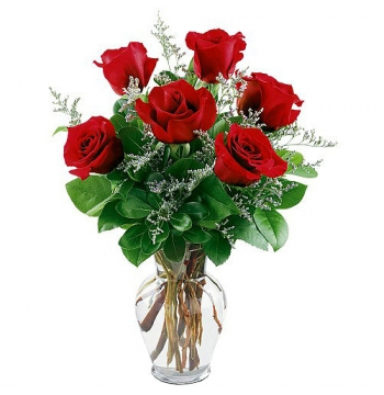 1/2 Dozen Red Roses Send to Manila Philippines