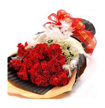 24 Red Carnations with White Flower Send to Manila Philippines