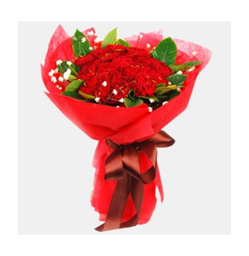 24 Red Carnations with Baby`s breath and Greenery Send to Manila Philippines