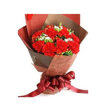 12 Red Carnations matched Greens Send to Manila Philippines