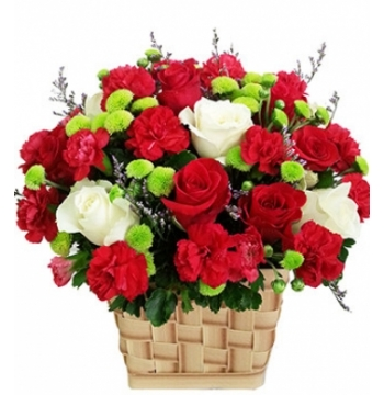 12 little Cute Red Roses