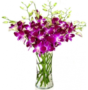 8pcs. Purple Orchids in a Vase