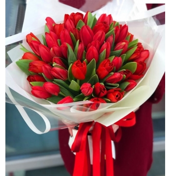 36 Red Tulips in a Bouquet